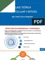 MEIOSIS Y CICLO CELULAR