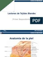 8. Lesiones en tejido blando
