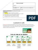 Guía contenido Nat. 3° básico
