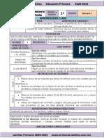 Noviembre - 1er Grado Conocimiento del Medio (2020-2021)