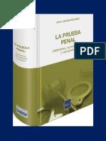 LA PRUEBA PENAL.pdf