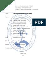 Monografía - Seguridad y defensa nacional