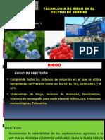 Riego de Precisión Cultivo Berries