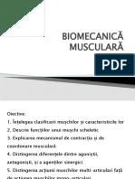 Biomecanica muschilor