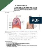 MIDTERM-ANATOMY-REVIEWER.pdf