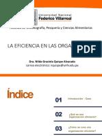 S2 EFICIENCIA ORGANIZACIONAL 08.11.2020.pdf