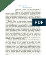 piatra_pitigoiului___plan_dezvoltat_de_idei