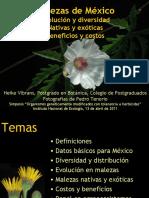 Malezas_de_Mexico_Evolucion_y_diversidad.pdf