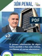 Revista 2017 TWS accion penal.pdf