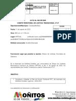 ` GUIA  2  ACTA CTJT 3 2020