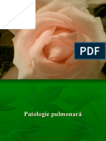 Patologie chirurgicala pulmonara