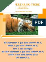 O_Despertar_do_Tigre