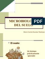 Microbiolog%EDa del suelo
