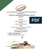 CONTROL DE PLAZO TRAFICO ILICITO DE DROGAS 2.pdf