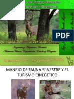Ficha Tecnica de Fauna Silvestre