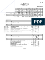 N33_Aleluia_MiguelCarneiro.pdf