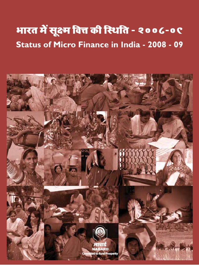 Microfinance literature review