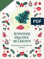 Ghid activități practice pentru Craciun
