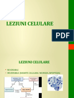 LP 03 Leziuni celulare