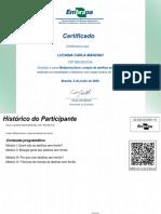 Meliponicultura_criação_de_abelhas_sem_ferrão-Certificado_de_conclusão_49070