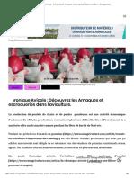 Chronique Avicole _ Découvrez les Arnaques et escroqueries dans l'aviculture. _ Senagriculture