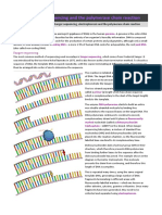 5-sanger-sequencing-and-the-polymerase-chain-reaction