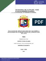 Tesis PSM.pdf