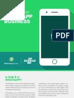 whatssapp Business_sebrae_v5