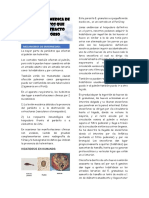 SEMANA 11 - Importancia medica que afectan el tracto respiratorio