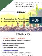 AULA 02 - CARACTERISTICAS DAS PLANTAS E ESTABELECIMENTO DO PASTO