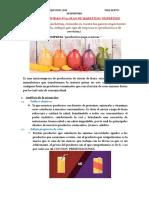 03.1 Plan de Marketing Rosales