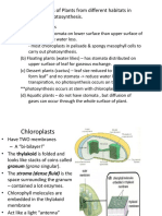 presentation-form4-Biology-Photosynthesis