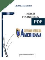 Indices Financieros...docx