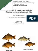Tehnologia de creştere a crapului în Amenajarea piscicola Sacel jud. Sibiu
