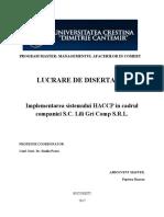 DISERTATIE_final.docx