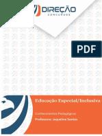 Educação Especial - Inclusiva - Modelo Direção