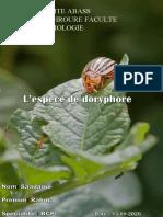 exman des pesticides. saadaoui (3).docx