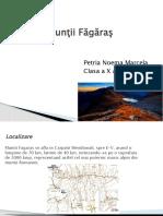 prezentare petria.pptx