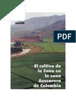 libro_p3-394 cemicaña.pdf