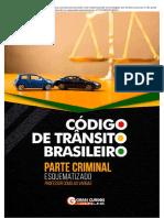 CTB_-_Parte_Criminal _ Passei Direto