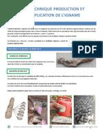 fichemultiplicationigname.pdf