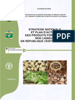 stratégie PFNL.pdf