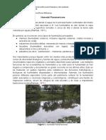 Humedal Panamericano.docx