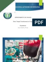 Terapia Transfusional.pdf