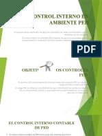 CONTROL INTERNO EN AMBIENTE PED