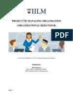 Organisational Behaviour Solution