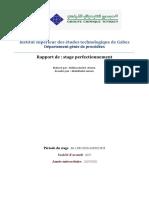 rapport DAPA 1.pdf