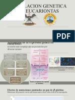 REGULACION GENETICA EN EUCARIONTAS