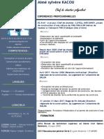 CV- KACOU-AIME SYLVERE.pdf