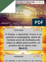 3T2020_Ap1_slides_caramuru